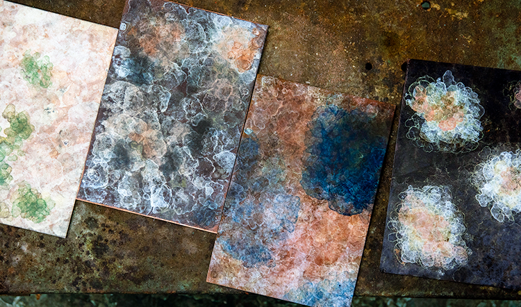 Charlotte developed her Lichen Patina technique when approached by TNC to expand her furniture collection